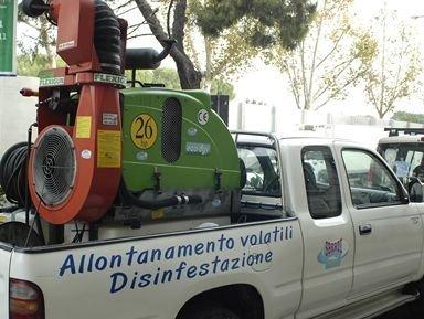 Disinfestazioni insetti a Firenze